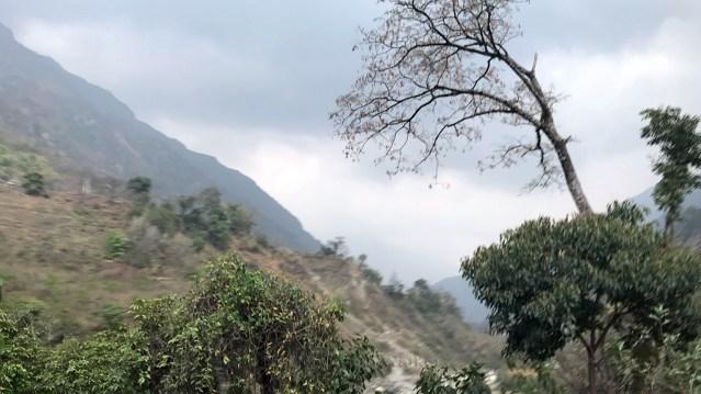 WM Mountain Weather Ngadi 01