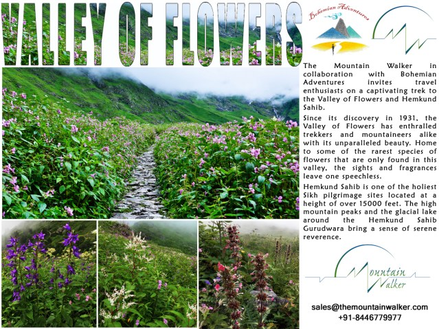 Valley of Flower Campaign