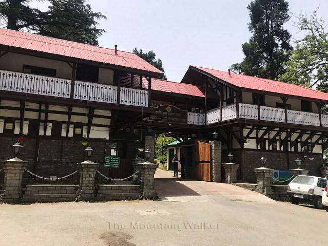 IIAS Shimla Walk 01
