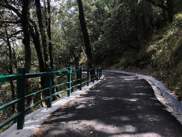 IIAS Shimla Walk 09