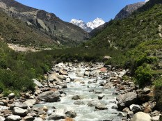 Kalkatti Dhar, the highest point in Har ki Dun, as seen from Seema village; Photo: Swarjit Samajpati