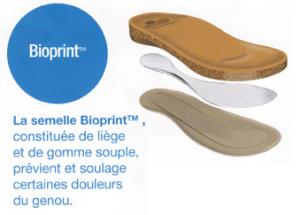 themouse scholl Bioprint