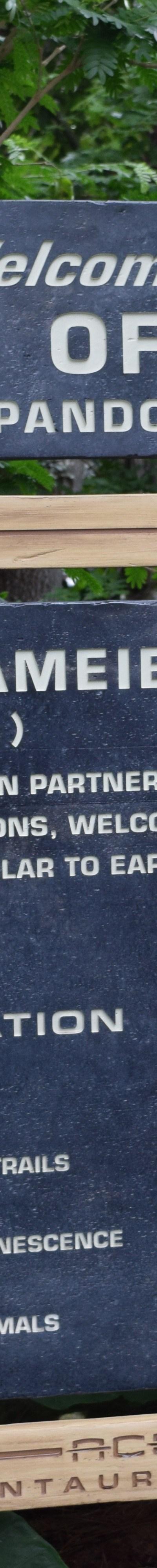 Pandora: The World of Avatar sign