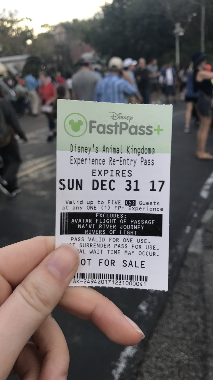 Disney Fastpasses