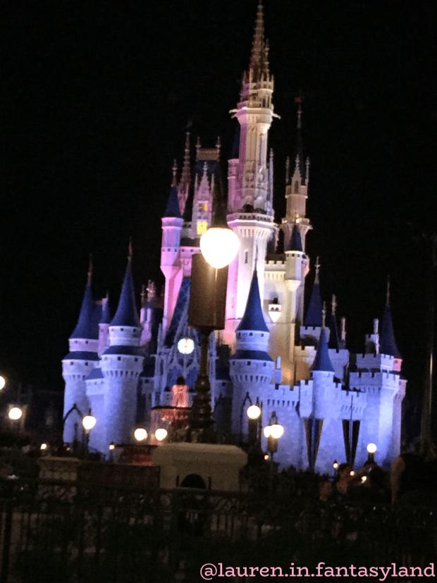 Disney Castle Disney for Adults