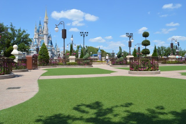 Hub Grass Magic Kingdom