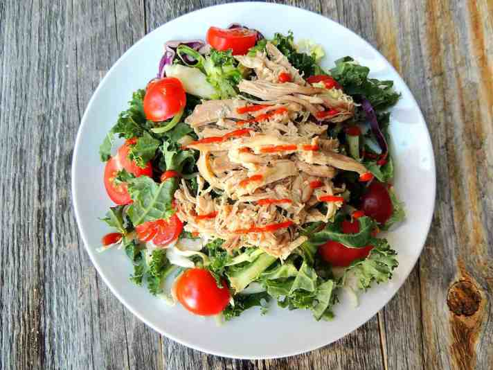 Slow Cooker Shredded Chicken Recipe