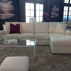 Sleeper Sofa Tampa Florida Dfs Leather 3 Seater Bed 12 Best Of Craigslist