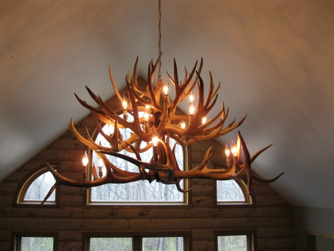 Inspiration About Charming Antler Chandelier Nz 98 Deer With Chandeliers And