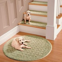 20 Best of Carpet Stair Treads for Dogs