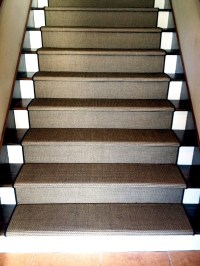 20 Best Collection of Carpet Treads for Hardwood Stairs