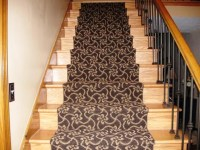20 Photo of Adhesive Carpet Strips for Stairs