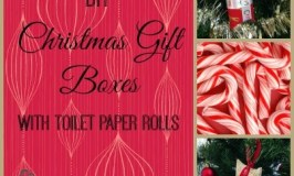 DIY Christmas Gift Boxes With Toilet Rolls