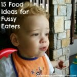 15 Food Ideas for Fussy Eaters