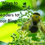 8 Ways to Attract Readers to your Blog