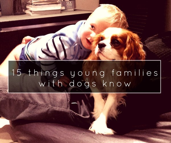 15 things young families with dogs know