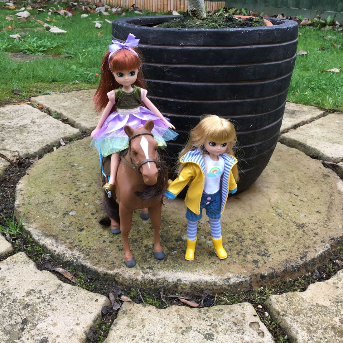 Lottie dolls and pony