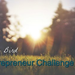 The early bird entrepreneur challenge