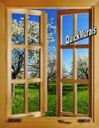 Apple Blossom Window (open) 1-Piece Peel & Stick Wall Mural