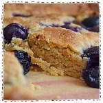 250x250_blueberryslice