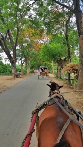 Mandalay 23