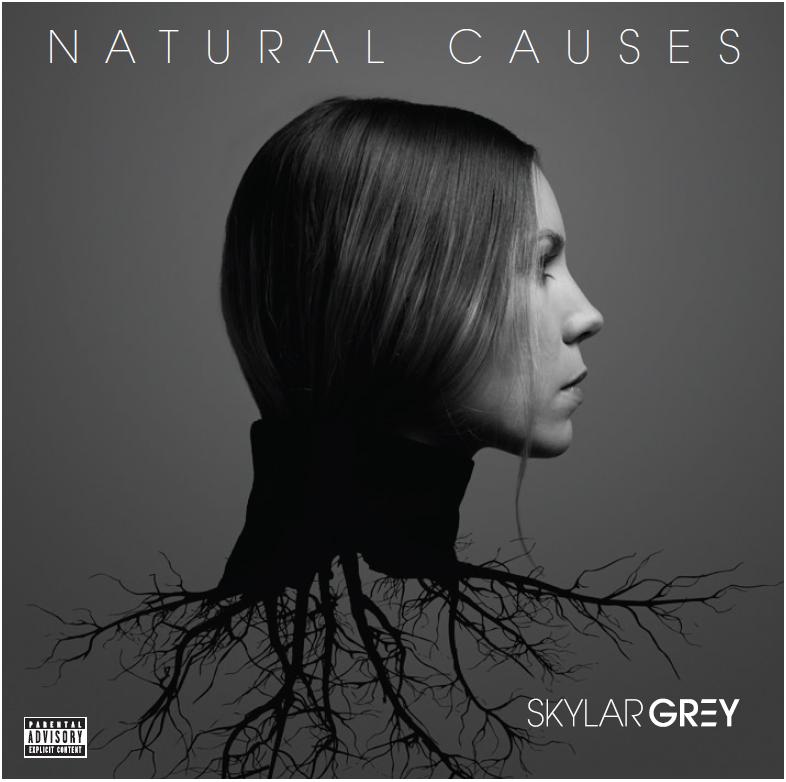 Skylar Grey, Natural Causes © Interscope