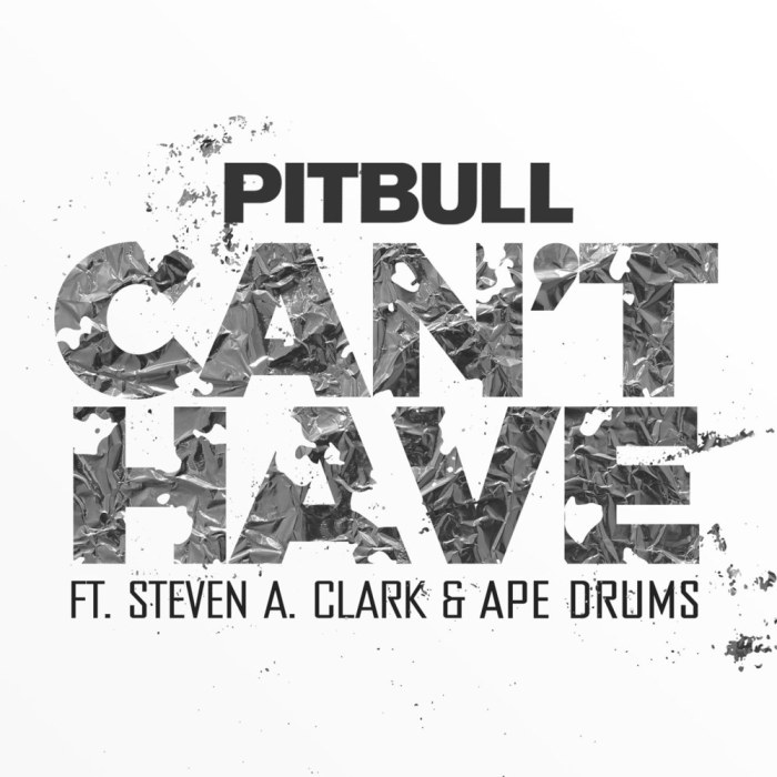 Pitbull, Can't Have © RCA