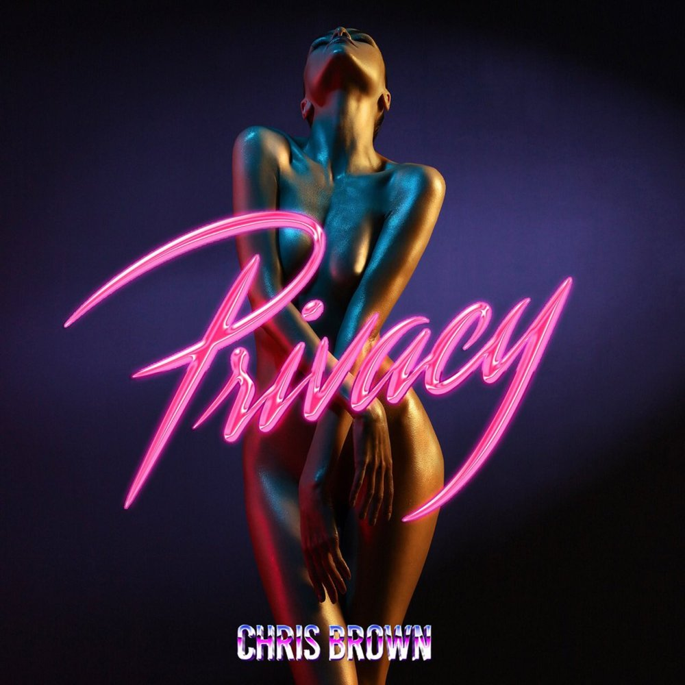 Track Review | Chris Brown, 'Privacy'