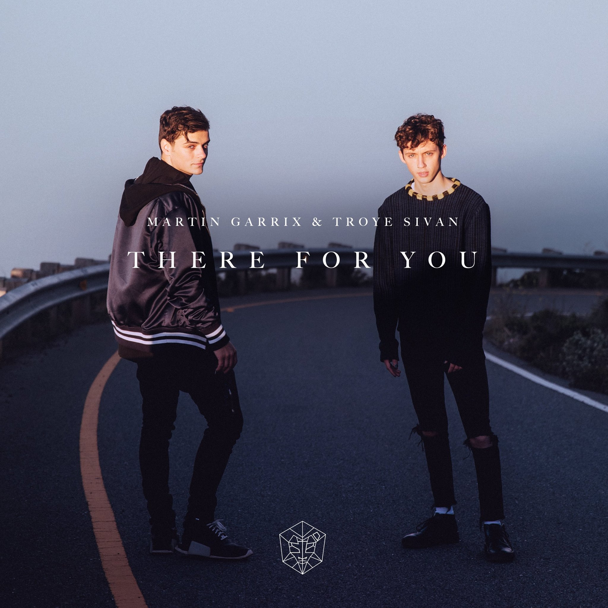 Martin Garrix & Troye Sivan, 'There for You' | Track Review