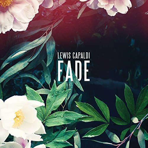 Lewis Capaldi, 'Fade'   Track Review