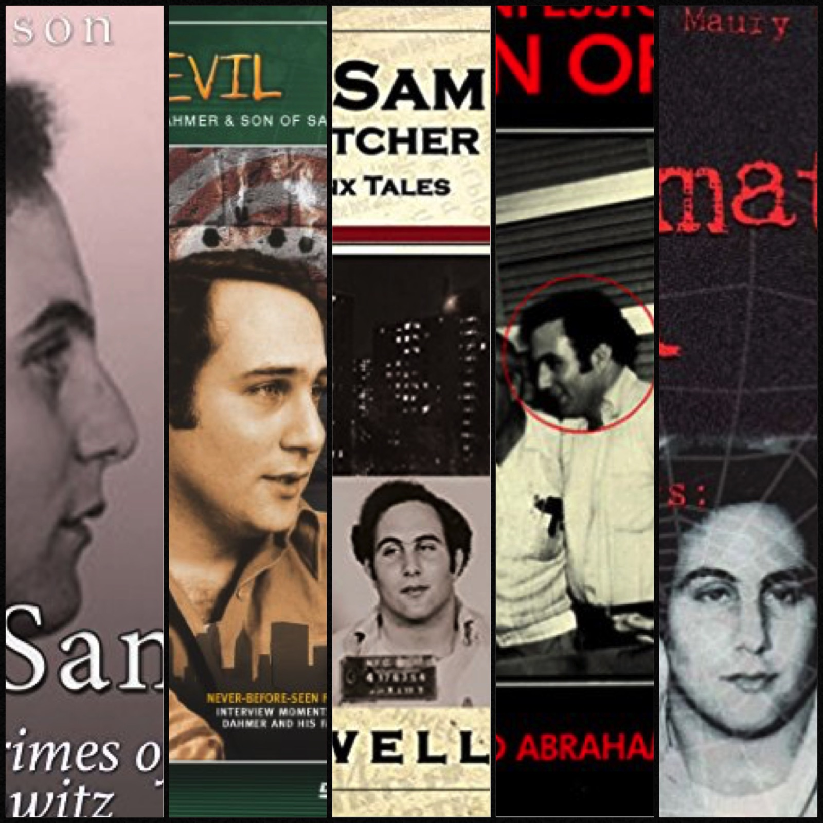 Songs About or Inspired by the Son of Sam | Playlist