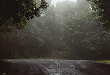 Melbourne Rain by Steve Wallis