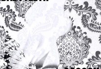 Cocoon by BABYTEETH