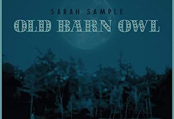 Old Barn Owl by Sarah Sample