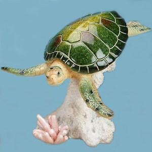Large-Sea-Turtle-on-Coral