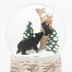 Black-Bear-and-Cub-globe-close-up