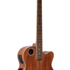 Boulder Creek Guitar, Acoustic Bass Koa 5-string EBR6-N5