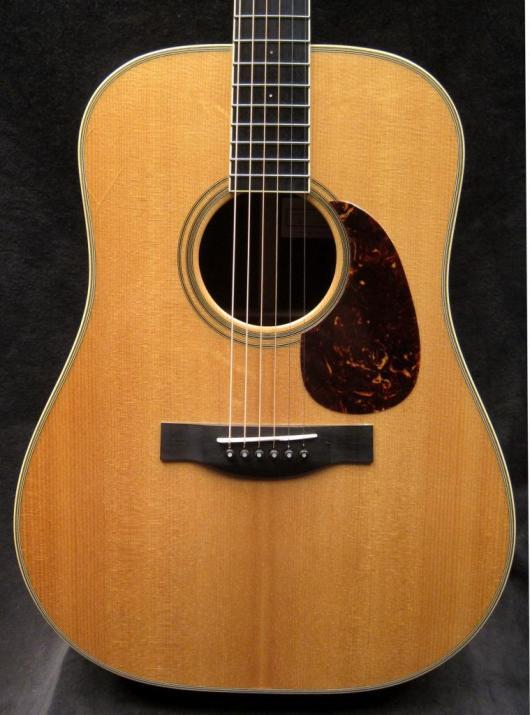 Santa Cruz Guitar Model D front