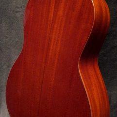 Santa Cruz Guitar 1929 OO back