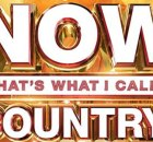 Now That's What I Call Country Vol. 12