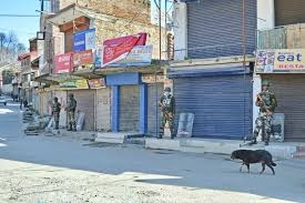 Parts of Budgam, Pampore shut to mourn militant killings