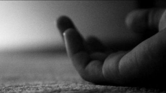BSNL employee falls from tree while repairing fiber in Kupwara, dies
