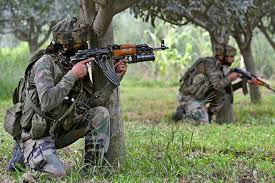 Two militants killed in brief shootout in Shopian