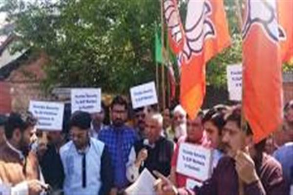 BJP stages protest in Srinagar against Mir's killing, seeks security for political workers