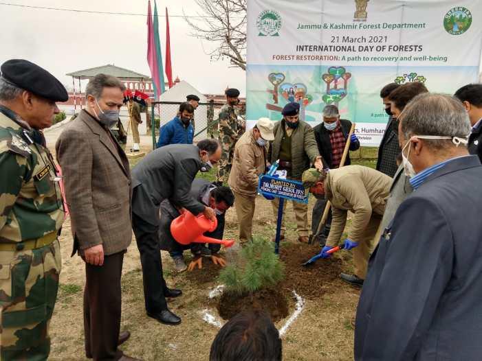 Ceremonial plantation marks International Day of Forests in Kashmir