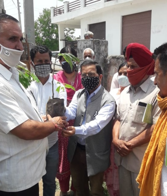 Horticulture department Jammu plants 1000 fruit saplings in each district to mark Work Environment Day