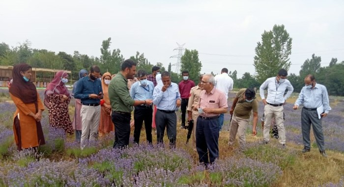 Union Secretary visits Lavender farm Bonura, Pulwama