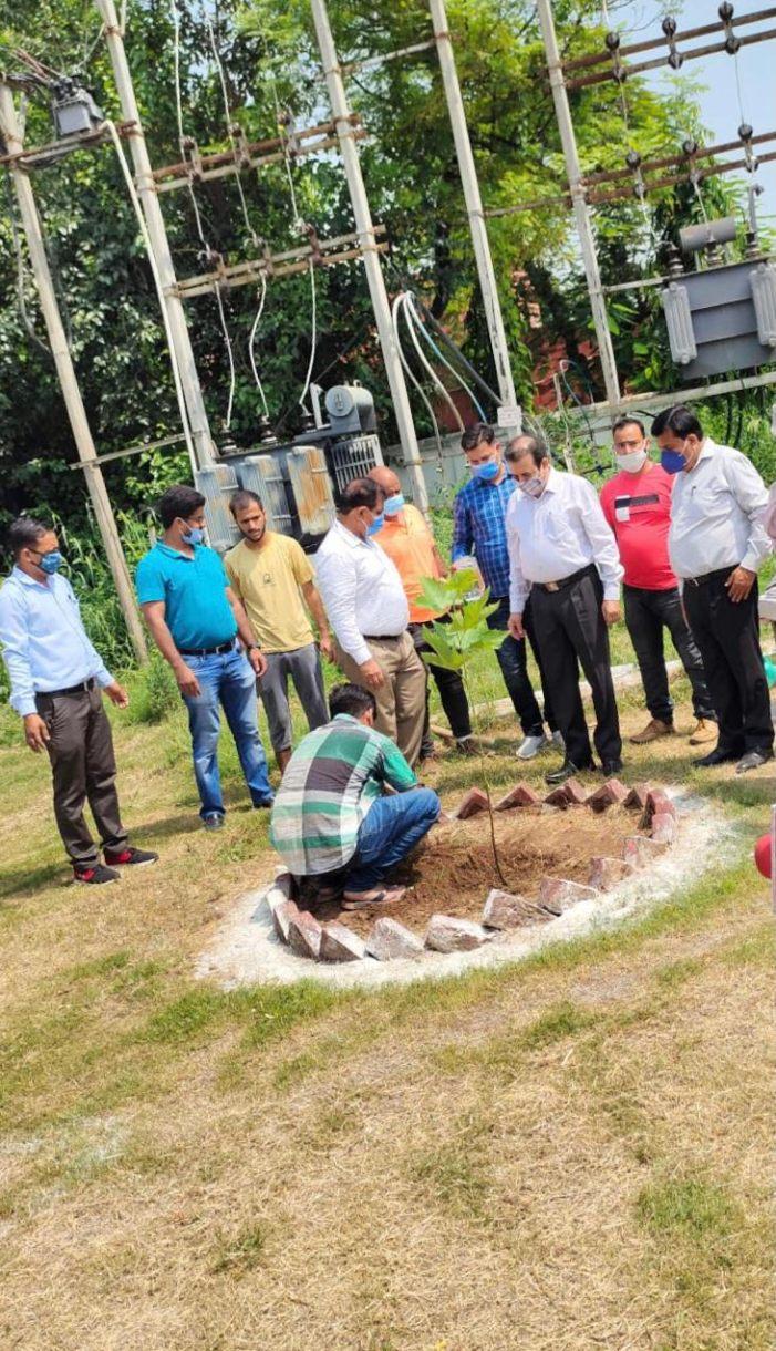 Plantation drive organised at Teacher Bhawan