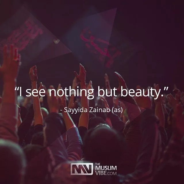 I see nothing but beauty - Lady Zainab