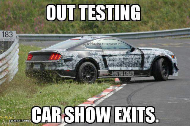 2016.4.12-Mustang-Memes-Wrecks-2